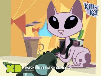 kat-kid-vs-kat-6930442-1024-768