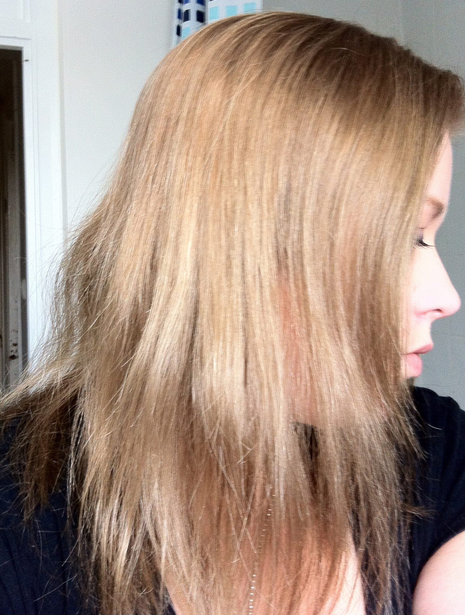Review Nicen Easy Non Permanent Colour Medium Ash Blonde 73 Up
